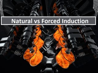natural forced induction