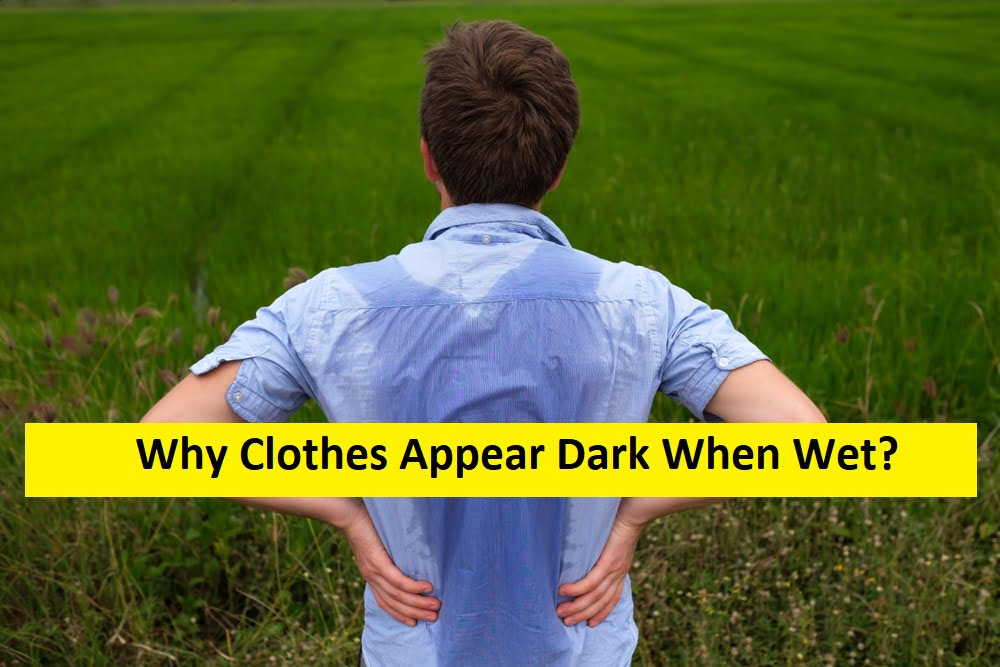 Why Do Clothes Appear Darker When They Get Wet
